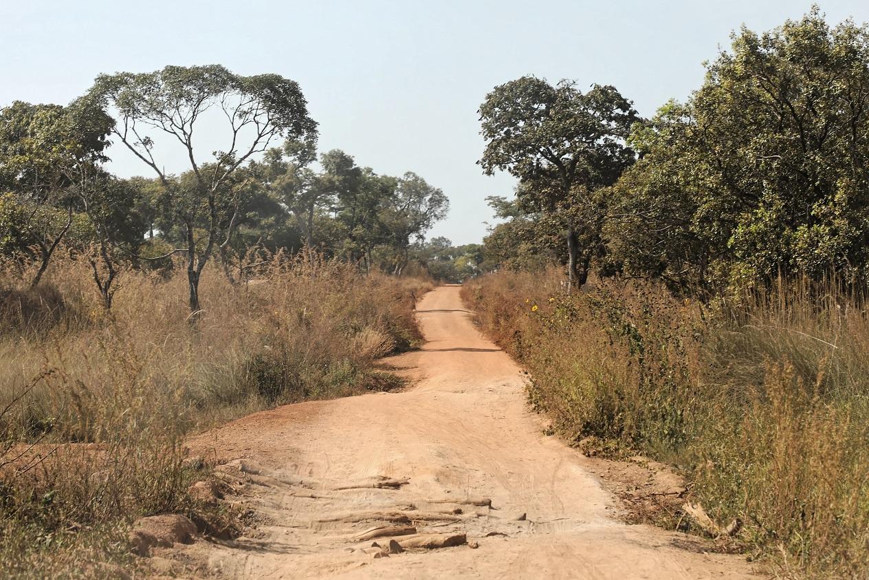 Weg nach Kayambi